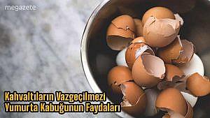 Kahvaltıların Vazgeçilmezi Yumurta Kabuğunun Faydaları