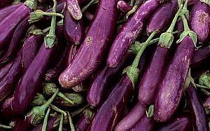 İran'da patlıcan yağdı iddiası