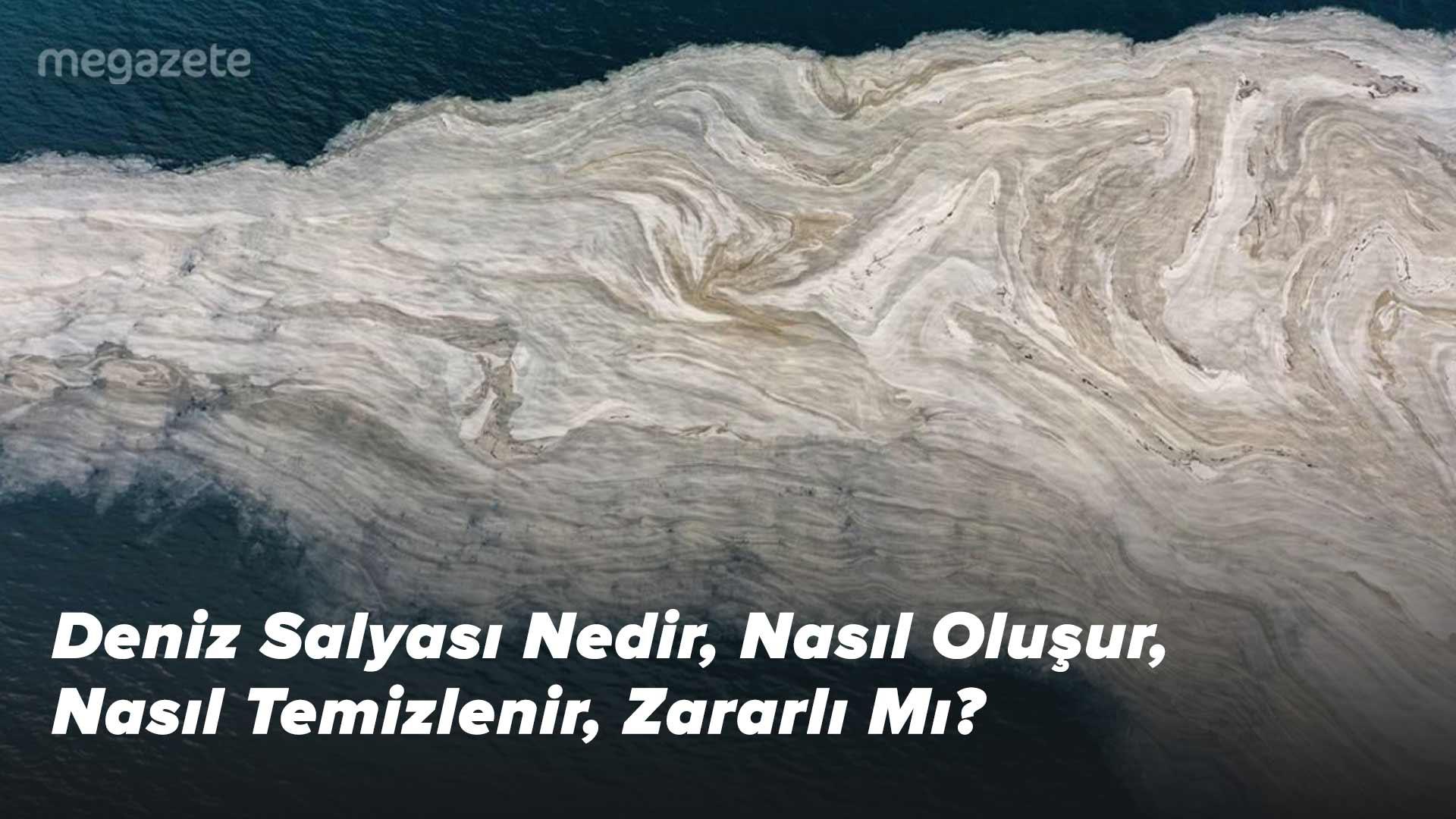Deniz Salyası Nedir, Nasıl Oluşur, Nasıl Temizlenir, Zararlı Mı?